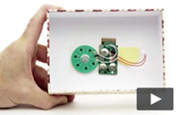 Light Sensitive Module